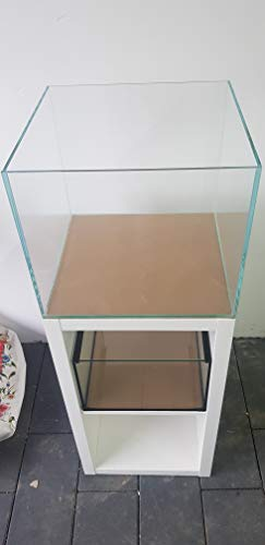 Wirbellosenzucht-Foltis Kallax Aquarium 41x39x35cm (LxTxH) 56l