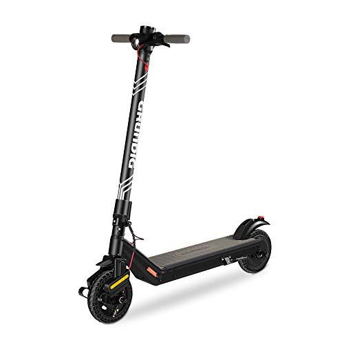 Grundig Patinete Eléctrico, Scooter Eléctrico Plegable para Adultos y Adolescentes con Motor...