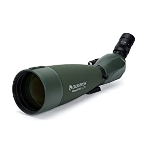 Celestron 52304-DS M2 65ED Regal Spotting Scope - Green