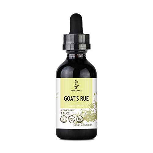 HERBAMAMA Goat's Rue Liquid Extract 2 fl oz - Galega Officinalis Nutritional Supplement - Promotes Milk Flow, Lactation & Mammary Tissue Development Drops - Non-GMO Support for Breastfeeding