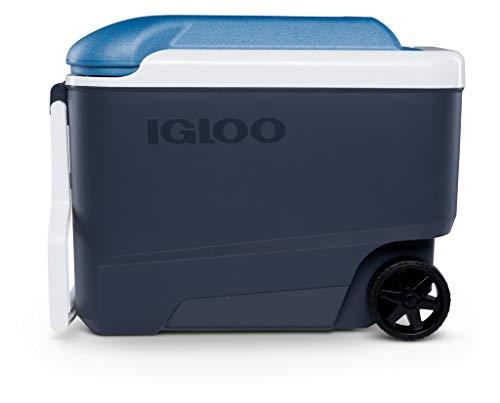 IGLOO Outdoor Maxcold Kühlbox, Blau, 38 Liter