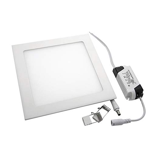 maidodo 2xPanel LED Cuadrado 12W Downlight LED,Driver incluido.Corte Ajustable,blanco frio 6500K (2x12W blanco frio)
