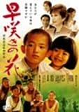 早咲きの花[DVD]