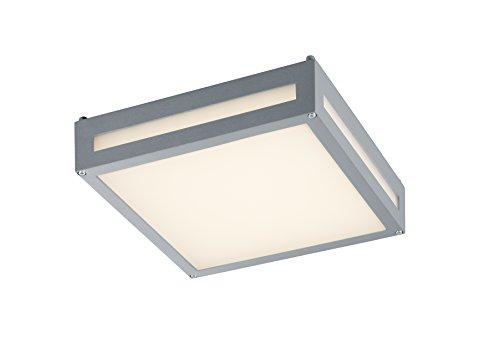 Trio Leuchten, Newa, LED-buiten-plafondlamp, gegoten aluminium, pvc-kap
