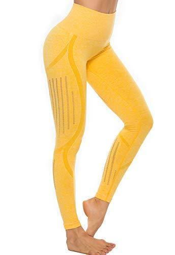 FITTOO Leggings Sin Costuras Mujer de Alta Cintura Yoga Elásticos y Compresivo Fitness