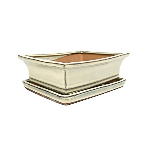 Keramik Bonsaischale in verschiedenen Groessen - Weiss- hochwertiger Blumentopf mit Unterteller/Schale - geflammt für drinnen und draussen, oval - Indoor/Outdoor (21 cm)