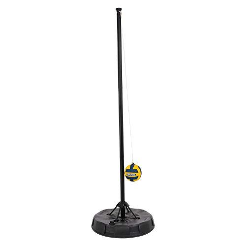 Lifetime 91009 Portable Tetherball System, Black