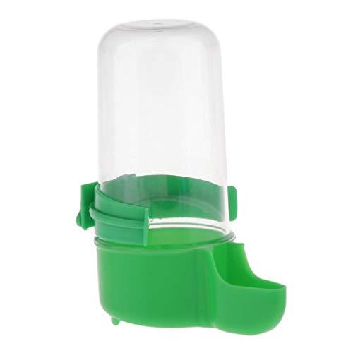 perfk 1pcs Bouteille d'eau en Plastique pour Abreuvoir d'oiseaux pour Animaux de Compagnie pour Volière Perruche Pigeon - Vert, 5x12cm