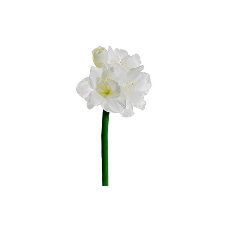 """silk flower arrangements 28.5"""" silk amaryllis flower stem -white (pack of 6)"""