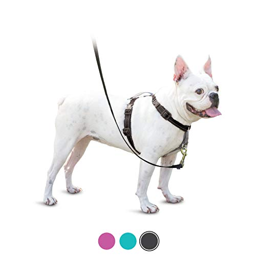 PetSafe 3in1 Harness, from The Makers of The Easy Walk Harness, Fully Adjustable No-Pull Dog Harness,Black,Small