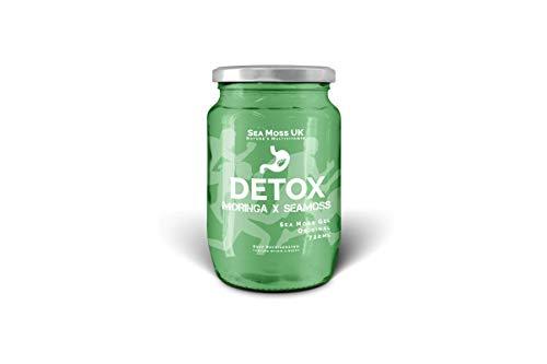 Gel de desintoxicación - Musgo de Mar y Moringa   Rico en vitaminas y minerales   Limpieza intestinal   Moringa Oleifera - Planta Medicinal Natural