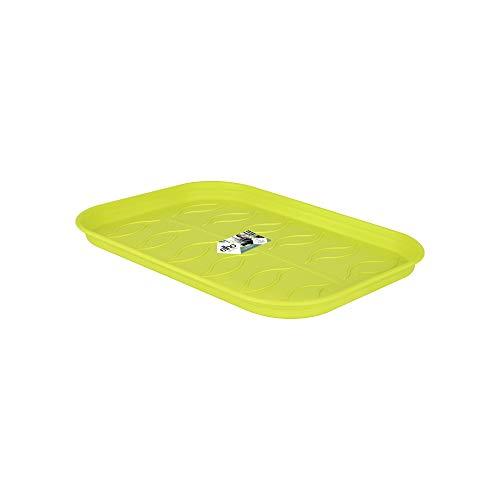Elho Green Basics Anzucht Untersetzer M - Lime Grün - Drinnen & Draußen - Ø 25.6 x H 2.2 cm