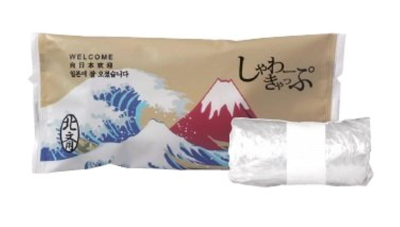 お祝いケント主にシャワーキャップ 2000個 JAPANSERIES 日本シリーズ 業務用 アメニティ 葛飾北斎