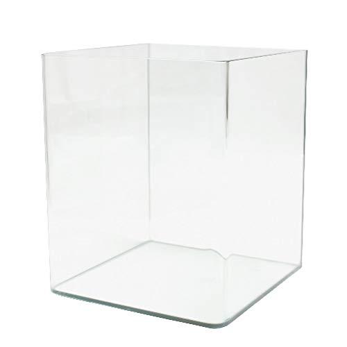 Amtra Nanotanl 30 - Acquario in vetro, 30 Litri, 30 x 30 x 35 cm