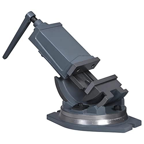 LIUBIAONET Tornillo de Banco basculante de 2 Ejes 160 mm