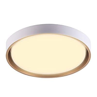 SHIGUANG LED Ceiling Light Fixture Modern Flush Mount Round 16.5 Inch 30W Dimmable 2110lm for Bedroom Living Room Kitchen Hallway,Warm White 3000K