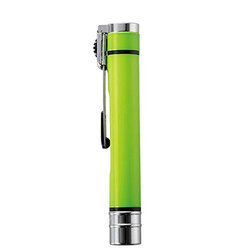 シヤチハタ ネームエルツイン(9mm×6mm) 印鑑 メールオーダー式 ギフト ナースリー限定カラー ハンコ ライムグリーン 162182A