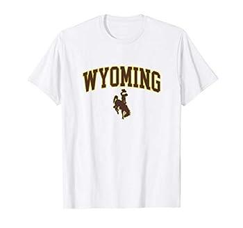 Mens Wyoming Cowboys Apparel Fan Favorite Arch T-Shirt