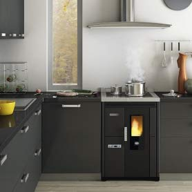 Eva Calòr Nina - Estufa de pellets para empotrar con horno y placa de cocción:...