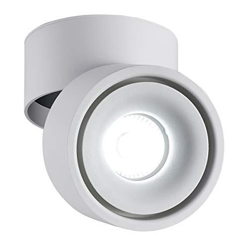 LANBOS 10W plafonnier spot LED downlight,Aangle du corps de lampe réglable, Plafonnier d'intérieur,10 * 10 * 10cm (blanc+Blanc Froid)