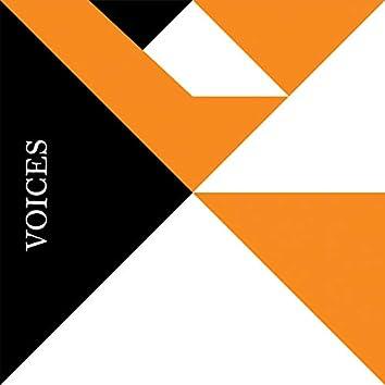 Voices V.A 002
