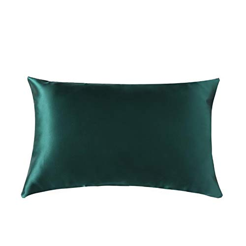 Funda de almohada de seda con cremallera oculta Naturaleza de primera categoría Facha de almohada con cremallera de seda en ambos lados para dormir para el dormitorio Sofá de la sala son muy suaves có