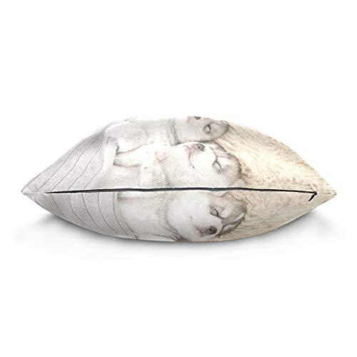 XiangHeFu Cute Animal Siberian Husky Puppies Sleeping Pillow Case Cushion Cotton Velvet Throw Pillow Cover 16x16 Inch