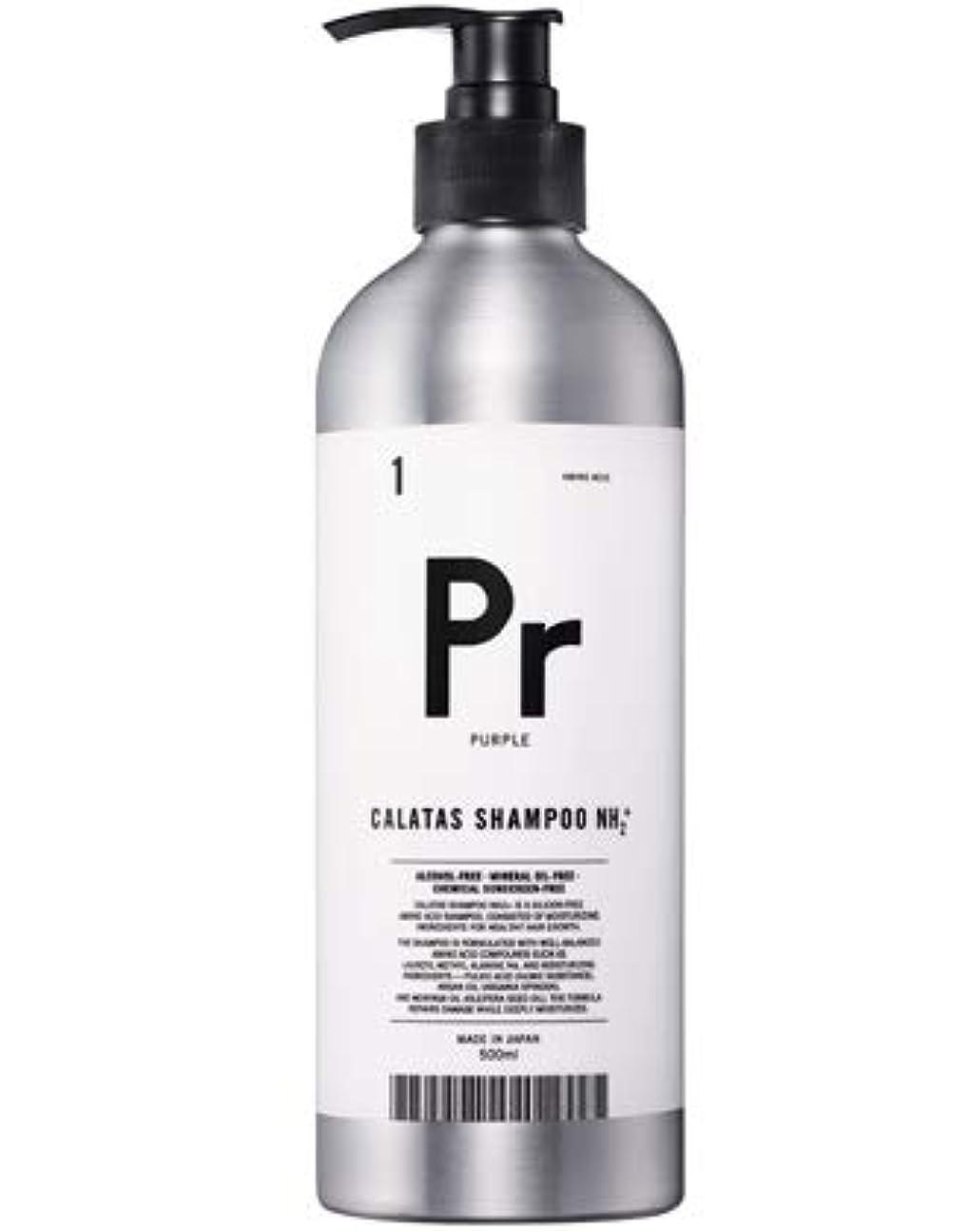 定常溶かすジョットディボンドンカラタス シャンプー NH2+ Pr(パープル) 500ml