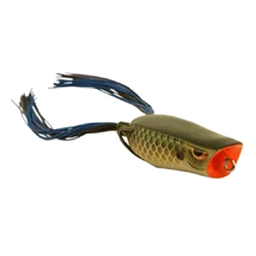 Spro Bronzeye Pop Bait-Pack of 1, Killer Gill