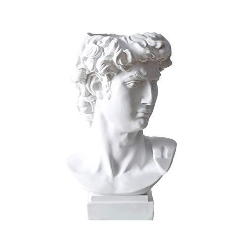 LICHAO Griechische David Statue Pflanzer, Indoor Outdoor Köpfe Harz Sukkulente Topf Blumenarrangement Vase Figur Büste Kunstwerk Replik Dekoration Skulptur, für Hausgarten