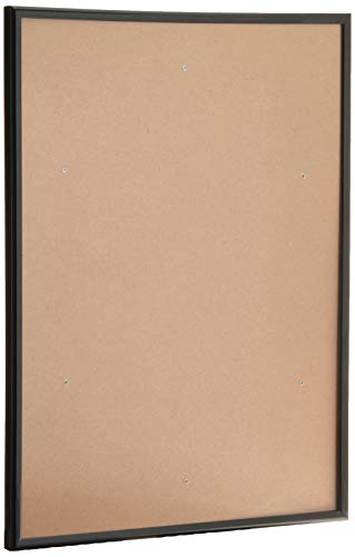Tpac Photo - Fast Frame Back Loading with Styrene Front Black A3
