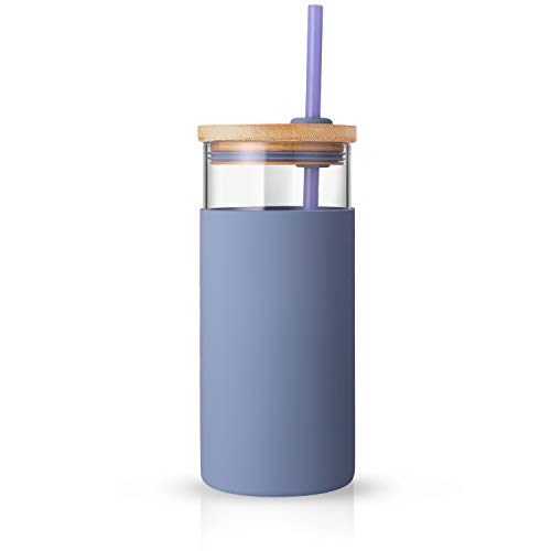 Tronco 20oz Glass Tumbler Glass Water Bottle Straw Silicone Protective Sleeve Bamboo Lid - BPA Free (Purple)