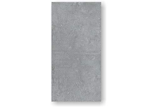 2 Stück Feinstein Fliesen ARK SILVER (60×120×1cm) matt grau Wandfliesen Küche Wohnraum Bad Feinsteinzeugfliese Verkleidung