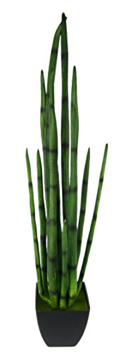 Kunstpflanze Kunstpflanze im