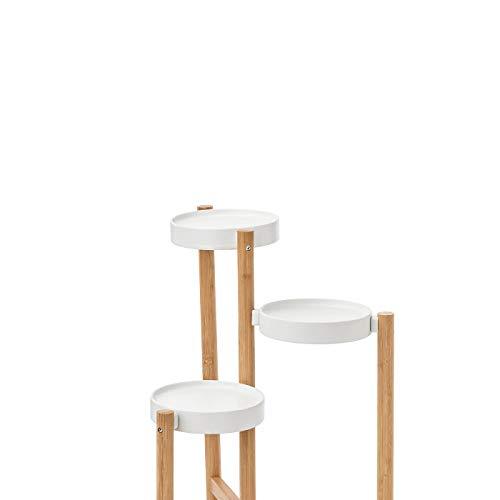 My- Stylo Collection - Soporte para Plantas (bambú, 78 cm, Altura máxima de 78 cm, Carga y Estante: 5 kg), Material: Estante: Acero, Recubrimiento en Polvo, Patas: bambú, Laca acrílica Transparente