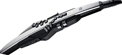 Roland Aerophone Pro Digital Wind Instrument, Professional-Grade with Refined Design, Premium Components, and Advanced Sound Engines (AE-30)