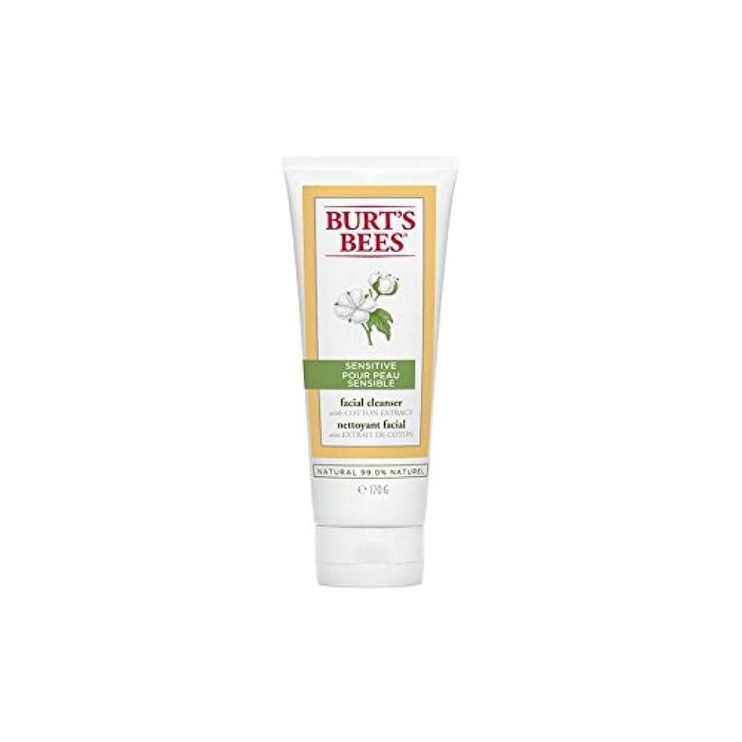 スリンク装置クランシーバーツビー敏感な洗顔料の170グラム x2 - Burt's Bees Sensitive Facial Cleanser 170G (Pack of 2) [並行輸入品]