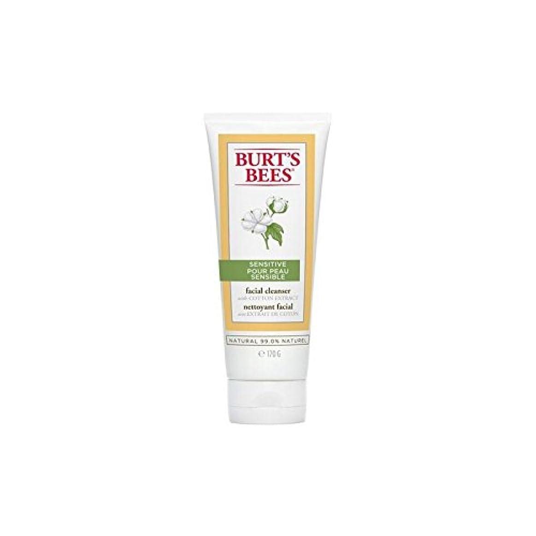バーツビー敏感な洗顔料の170グラム x2 - Burt's Bees Sensitive Facial Cleanser 170G (Pack of 2) [並行輸入品]