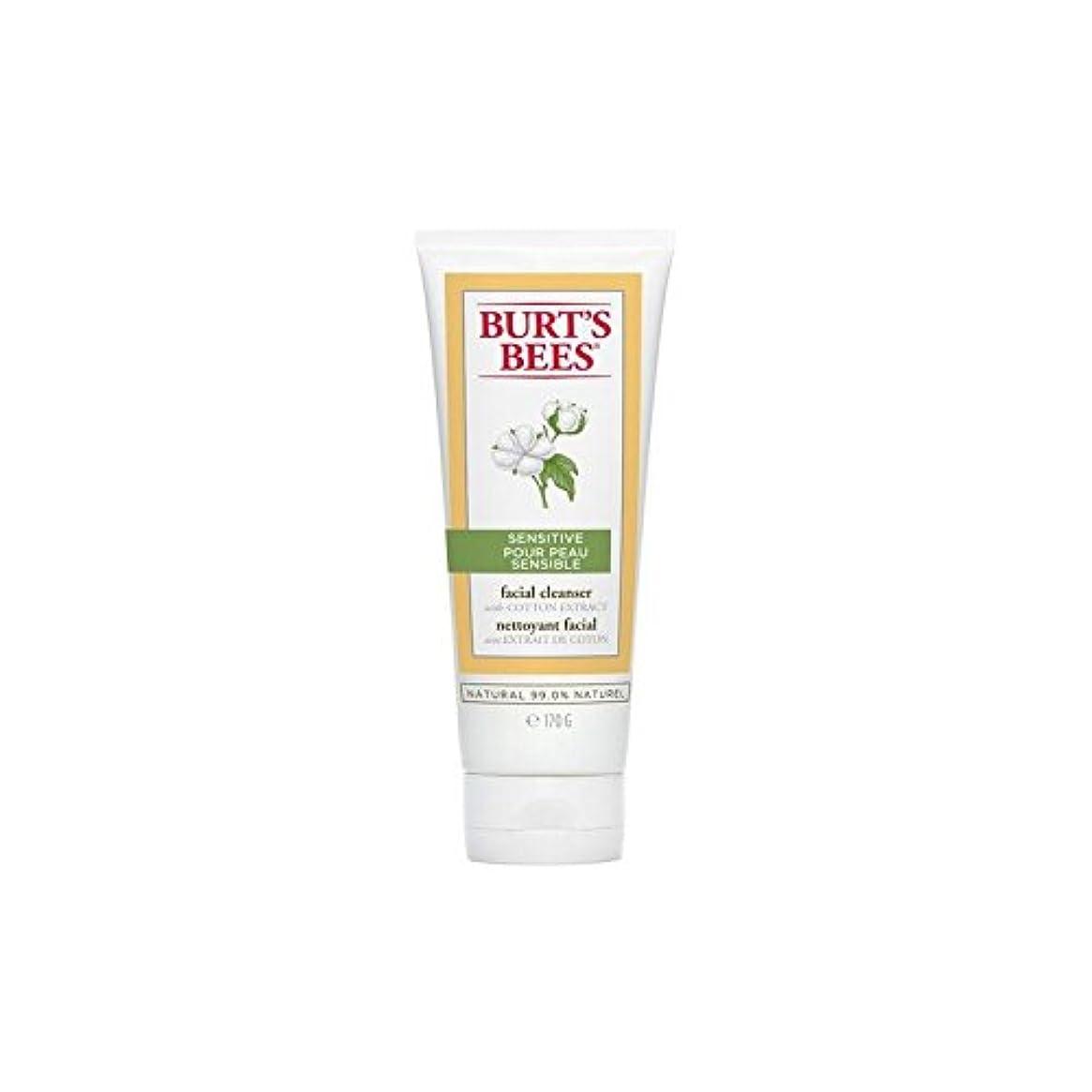 学校の先生木材ルアーBurt's Bees Sensitive Facial Cleanser 170G - バーツビー敏感な洗顔料の170グラム [並行輸入品]