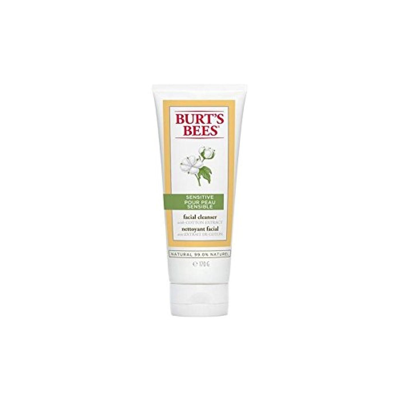 ソース肥満故障中バーツビー敏感な洗顔料の170グラム x4 - Burt's Bees Sensitive Facial Cleanser 170G (Pack of 4) [並行輸入品]