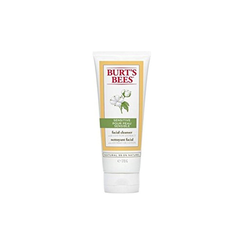増加する億ラダBurt's Bees Sensitive Facial Cleanser 170G - バーツビー敏感な洗顔料の170グラム [並行輸入品]