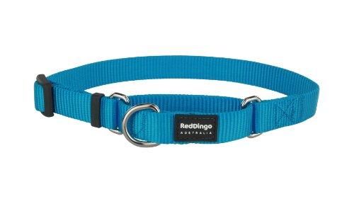 Red Dingo - Collar Tipo Martingale para Perro, diseño Liso