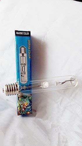 Couleur 250w 14,000k Hqi de Couleur Marine Ampoules à iodures métalliques à Douille E40