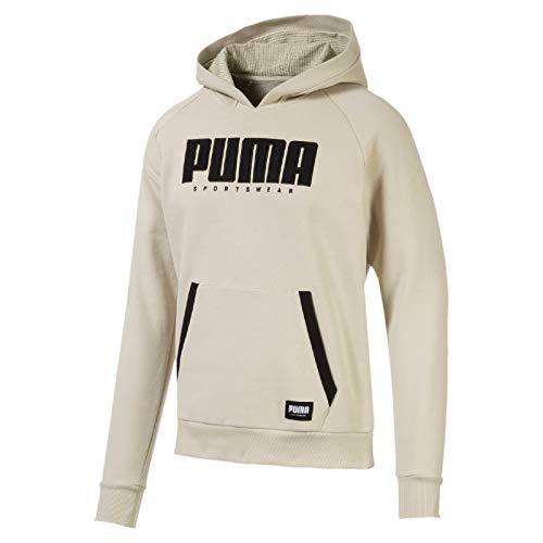 PUMA Herren Athletics Hoody FL Pullover, Overcast, XXL