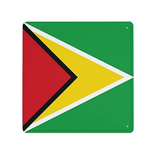 DECISAIYA Retro Blechschild Flagge von Guyana Erwachsene Kinder drucken Rauchallergien Geschenk-Idee für Nostalgie-Fans,aus Metall,Vintage-Dekoration,30x30cm