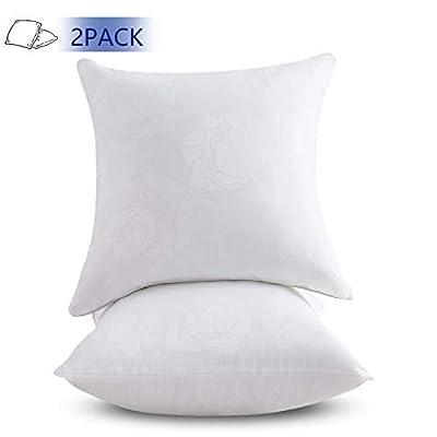 Emolli 18 x 18 Pillow Inserts Set of 2, Throw Pillow Inserts Premium Stuffer Down Alternative,Super Soft Microfiber Filled Decorative Pillow Cushion