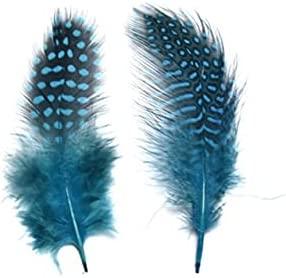 RedSunday- 20 High order 50Pcs Colorful Don't miss the campaign Party Feathers Plume Craft Pheasant