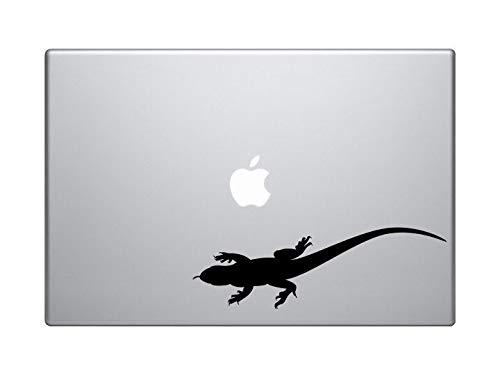 DKISEE Lizard Wandelen 13