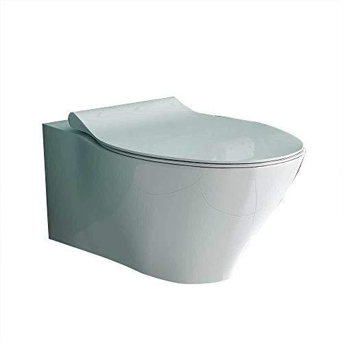 Alpenberger Taharet - Juego de bidé para inodoro con asiento y grifo empotrado para agua fría y caliente, cisterna y placa de fijación cromada