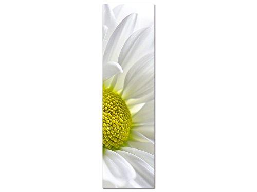 GRAZDesign Blumen Wandbilder Wohnzimmer, Acrylglasbilder Weiß gelb Margerite, hochkant / 50x180cm